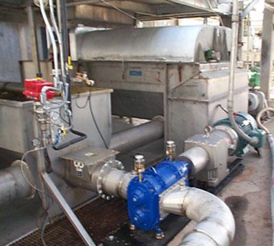 Abeve Vogelsang Rubber Lobe Pumps